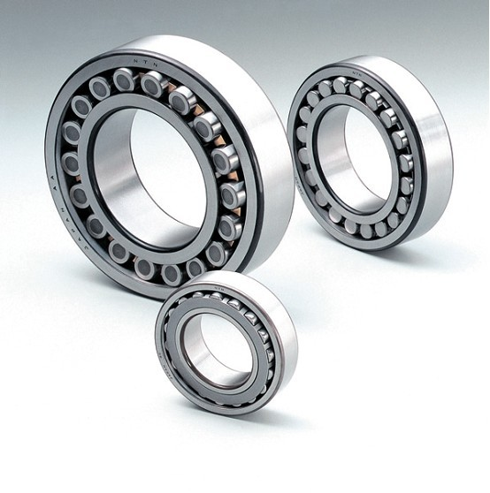 NAS5008ZZ Double Row Cylindrical Roller Bearing 40x68x38mm