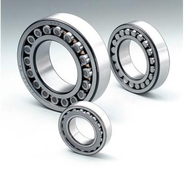SL08038 Cylindrical Roller Bearing With Spherical OD Outer Ring