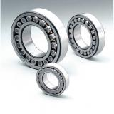 RSF-4821E4 Double Row Cylindrical Roller Bearing 105x130x25mm